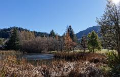 Hanmer Forest Park