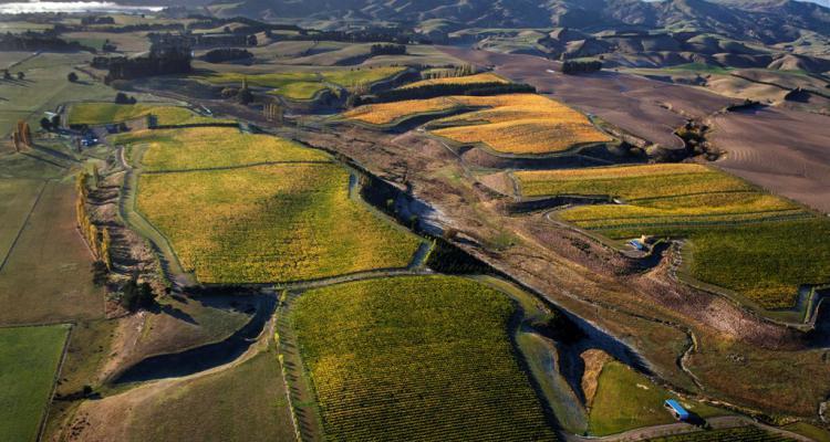 Mt Beautiful vineyard Hanmer Springs region